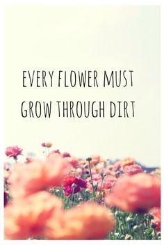 flowers grow through dirt